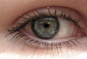 Gray-eyed Lady