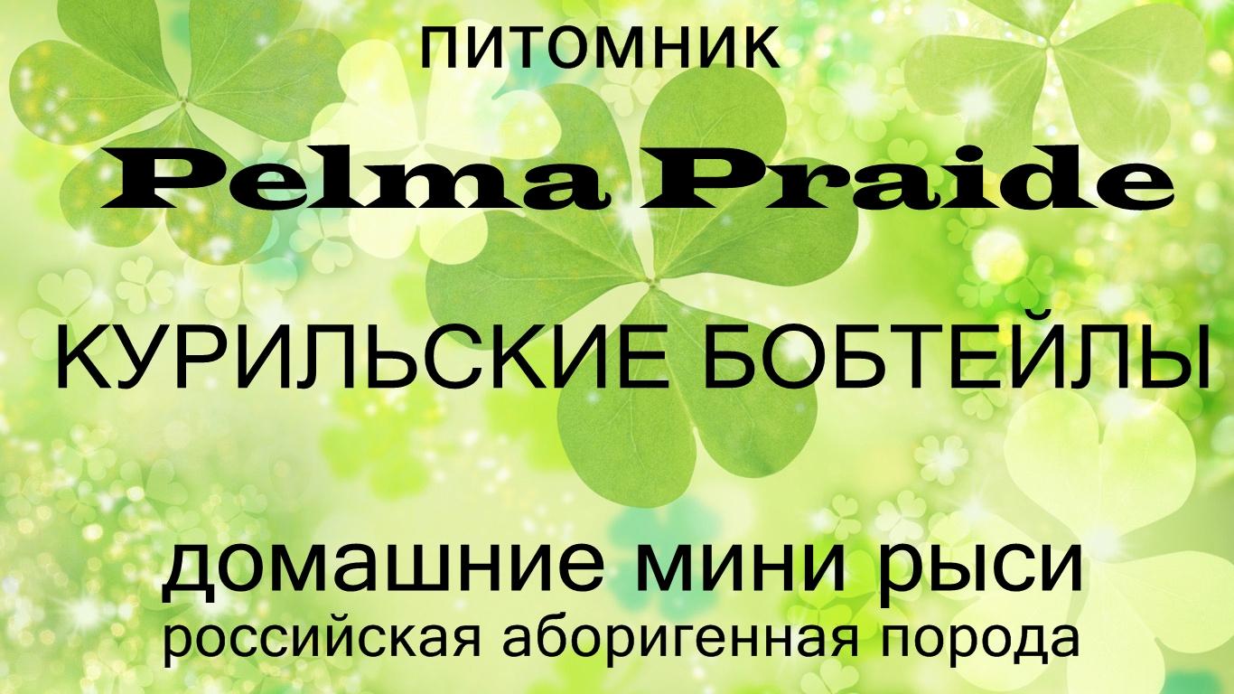 Pelma_Praide