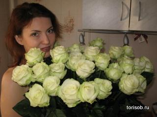 torisob